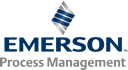 Emerson Process Management​